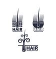 hair transplantation logo logotype template set vector image