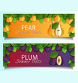 paper cut pear plum fruit banner set vector image vector image