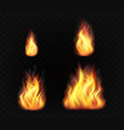 realistic fire flames set transparent burning vector image