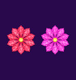 red and pink diamond flower vector image
