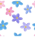 Seamless forget-me-not pattern vector image