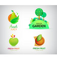 set organic bio eco and nature food vector image vector image