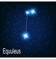 The constellation Equuleus star in the night sky vector image vector image