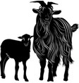 animals goat and goatling isolated on white backgr vector image
