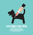 Dogs Vaccine To Prevent Illness vector image vector image