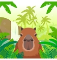 Kapibara on the Jungle Background vector image vector image
