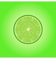 lime slice vector image vector image