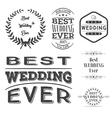 Set of best wedding ever labels vector image