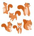 set of cute squirrels set of cute squirrels vector image