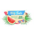 big sale discounts banner vector image