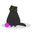 cat with a pink ball yarn cute black kitten vector image