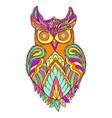owl fantasy bird color page vector image