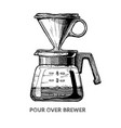 pour over brewer vector image vector image
