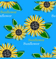 seamless pattern with bright sun flowers vector image vector image
