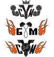 set gym vector image vector image