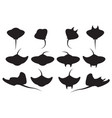 set stingray silhouette and icons vector image vector image