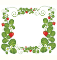 Strawberry floral frame vector image