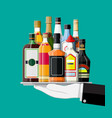 alcohol drinks collection in tray vector image