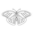 butterfly continuous line vector image vector image