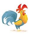 cartoon rooster stands on one leg vector image vector image