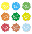 set of stickers with the inscription special vector image vector image