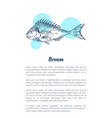 bream fish seafood hand drawn vector image vector image