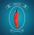 Devil red hot chili pepper and vintage decor vector image