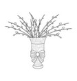 fluffy pussy willow bouquets an arrangement in vector image vector image