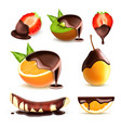 fruits and berries with chocolate vector image vector image