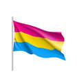 pansexual standard movement lgbt vector image vector image
