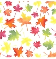 Pattern of colorful maple autumn leaves vector image