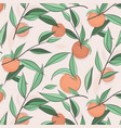 summer fruit peach banner sketch vector image vector image