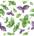 Watercolor seamless pattern hand drawn herb vector image vector image