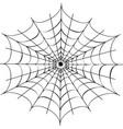 decorative spider web vector image vector image