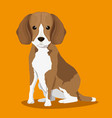 dog bred pet friendly vector image