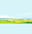 fields and meadows panorama landscape background vector image vector image