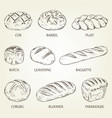 outline set of different kinds of bread vector image vector image