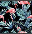 pink flamingo blue jungle vector image
