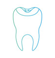 restored tooth with root in degraded green to blue vector image