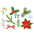 set merry christmas winter plants vector image