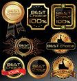 best choice elegant labels vector image