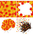 bright autumn leaves vector image