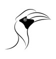 hornbill line drawing vector image