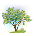 tree grass spring vector image vector image