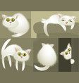 White cute cats vector image vector image