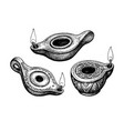 ancient clay oil lamps vector image vector image