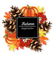 autumn card background pumpkin and colorful vector image vector image