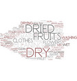 dry word cloud concept vector image vector image