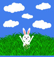 easter bunny in the grass vector image vector image