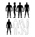 fashion man body full length bald template vector image vector image